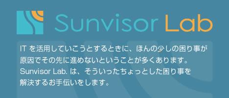 Sunvisor Lab